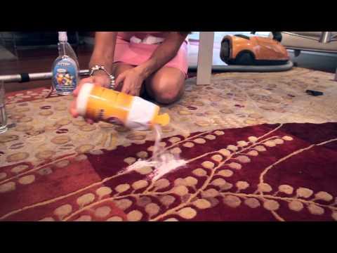 Как подстричь кокер-спаниеля в домашних условиях
