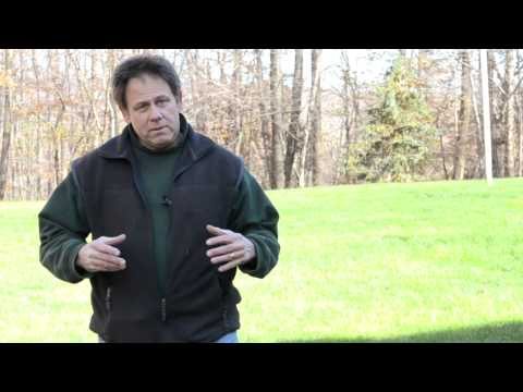 Lawn Care Shelton Newtown CT | Fall Cleanup Tip from Greenskeeper Lawn Care