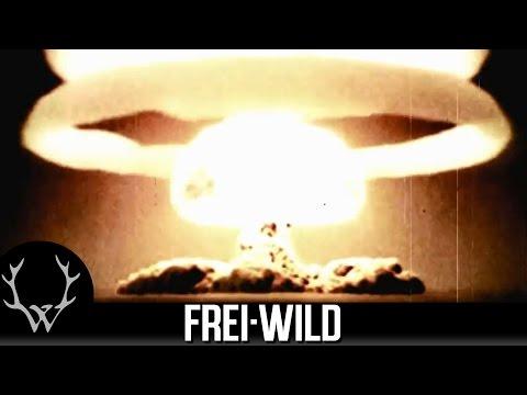 Frei Wild - Land Der Vollidioten