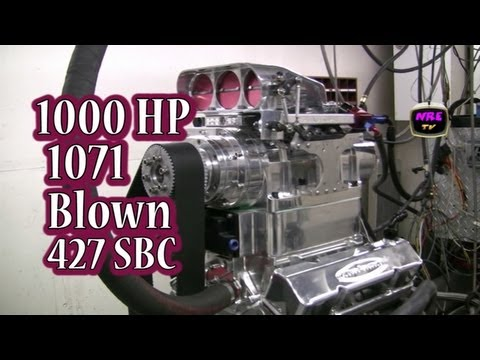 Mad Max's Spawn.  Vicious 1000 HP 427 CI SBC.  1071 Blown SBC from Nelson Racing Engines.