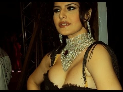 Zarine Khan To Play A Punjabi Girl In Jatt James Bond video
