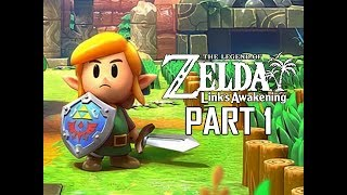 The Legend of Zelda Link's Awakening Remake Walkthrough Part 1 - Intro & First Dungeon!!! (Switch)