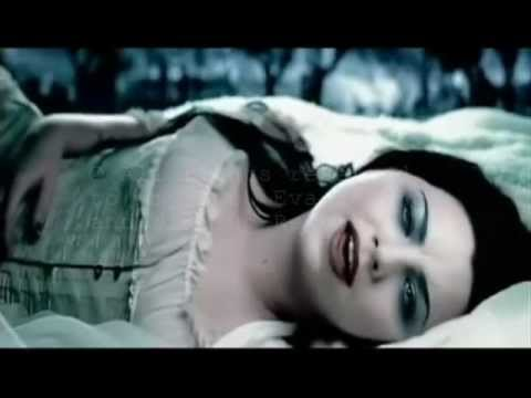 Together Again -  Evanescence (lyrics In The Video) video