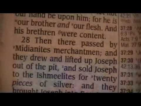 Genesis 37 Holy Bible (King James)