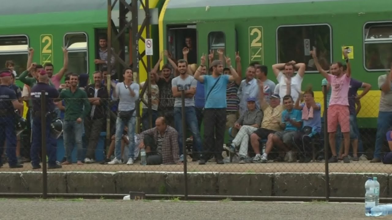 Migrant crisis: Chaos as trains are stopped in Hungary