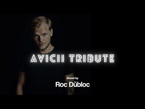 Roc Dubloc - Avicii Tribute