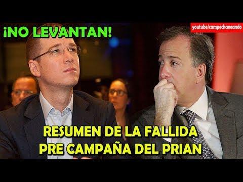 Vicente Fox Humillado, Ricardo Anaya Cantante y Meade copia ? Campechaneando