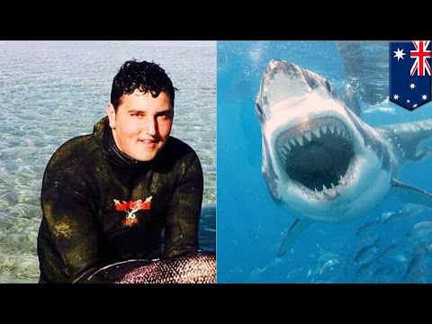 Another Western Australia Shark attack: spearfishing teen killed in great white attack