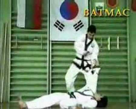 AMAWA / GM Robert Haritonov's Tang Shou Dao / Tang Soo  Do Team / Speed Hand and KickTechniques Image 1