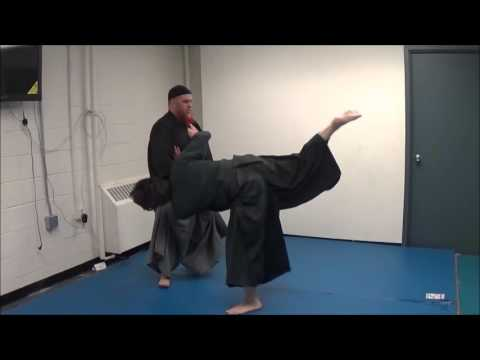 Difference between jujutsu and aiki myoden