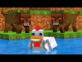 Chicken Life - Minecraft Animation
