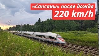 "[RZD] ""Sapsan"" trains after the rain. 200 - 220 km/h"