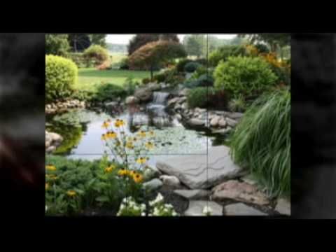 A Greener Tomorrow Landscaping in Beverly Hills CA