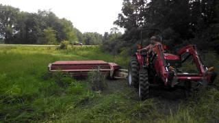 Case IH 55a mowing hay