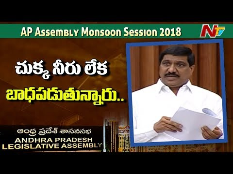 TDP MLA BC Janardhan Reddy Speech at AP Assembly | Discussion  on Crops Damage | NTV