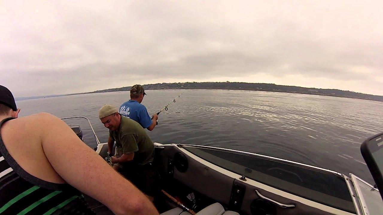 Point loma kelp fishing 8 10 2014 fishing fever for Point loma fishing