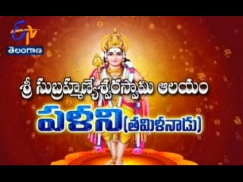 Sri Subramanya Swamy Temple, Palani, Tamilnadu - TS - 20th August 2015 - తీర్థయాత్ర – Full Episode