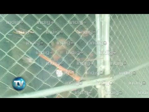 Reporte Indigo (Edición 520): Denuncian abuso de San Nicolás en cierre de Orión