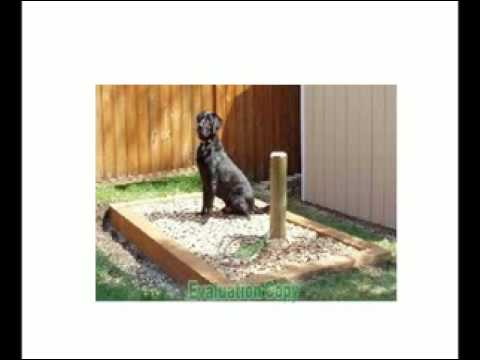 Snouthouse the solution to your dog poop problem youtube for How to find a good builder in your area