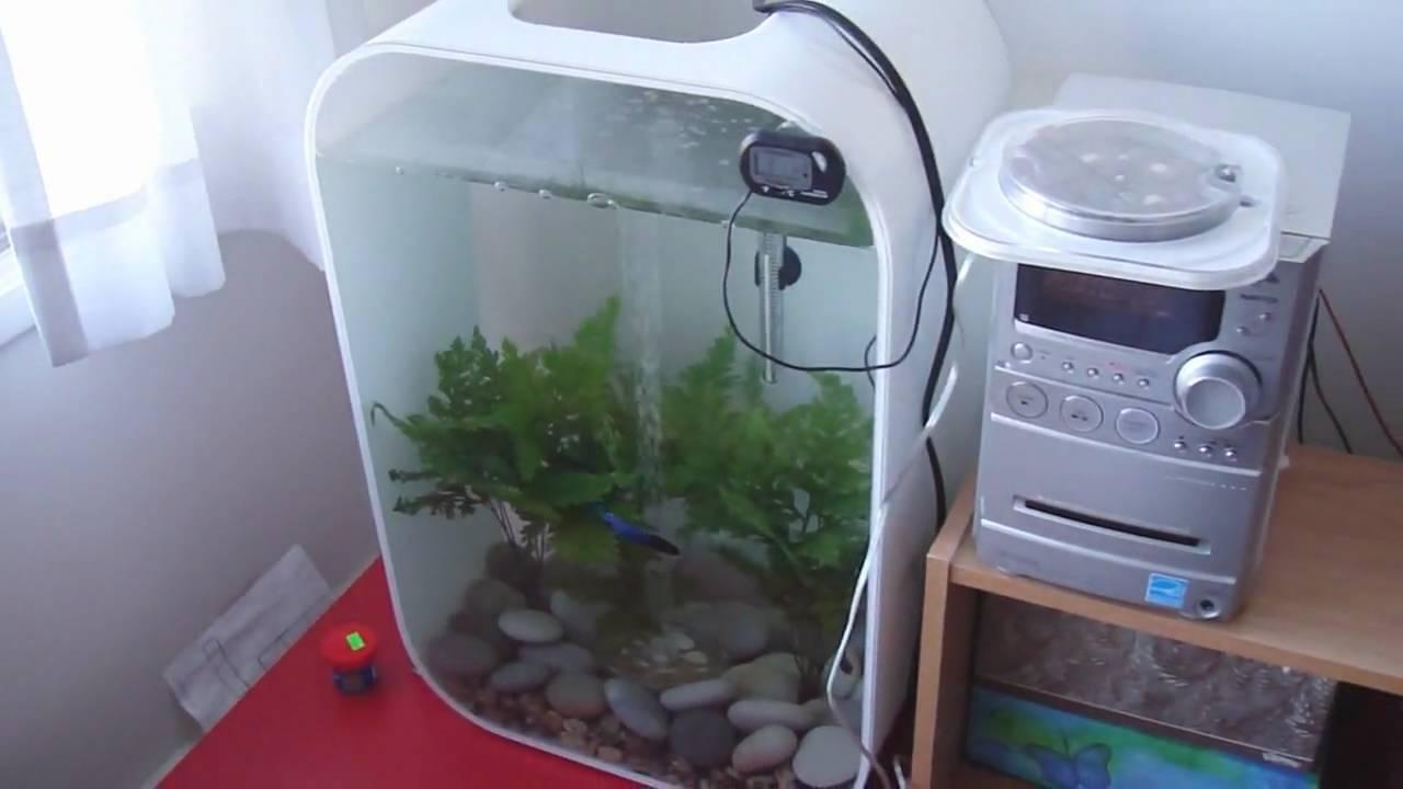 Biorb life 45l 12 gallons aquarium with live plants youtube - Petit aquarium design ...