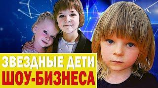 Звездные Дети Шоу-Бизнеса