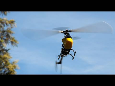 Exceed Legend 450 6ch 3d Rc Helicopter in Action
