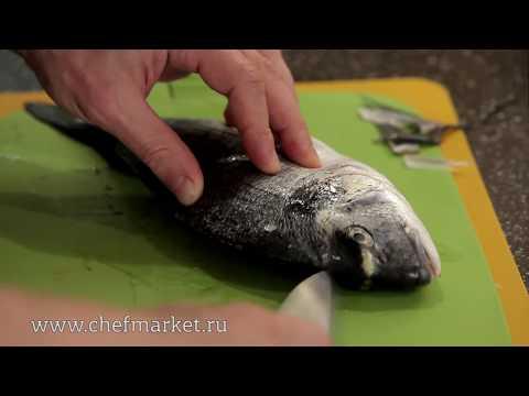 Дорада: как разделать белую рыбу и приготовить севиче. Кулинарная школа ШЕФМАРКЕТ.