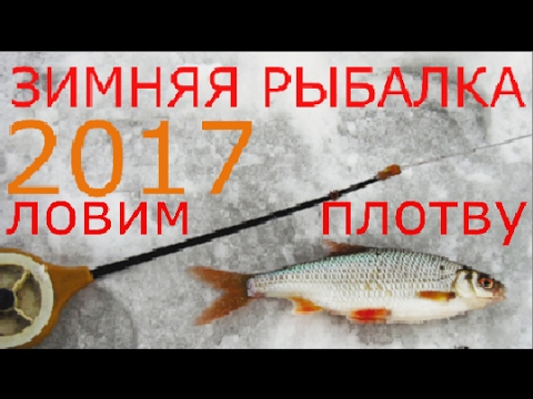 Зимняя рыбалка 2017. Ловим плотву на кивок (Мормышка)