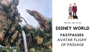DISNEY WORLD - FastPass Avatar Flight of Passage