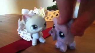 Lps Little Disasters 1 A Wedding Disaster Part 1