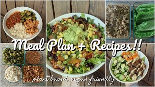 My Weekly Family Meal Plan + RECIPES (Plant-Based Meal Ideas)