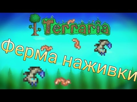 terraria как собирать наживку