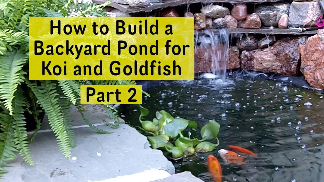How to build a backyard pond for koi and goldfish part 2 for Building a goldfish pond