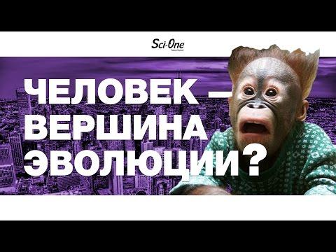 ЧЕЛОВЕК — ВЕРШИНА ЭВОЛЮЦИИ? | IQ
