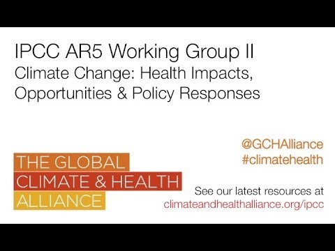 Webinar on 'Climate change: health impacts, opportunities and policy responses'