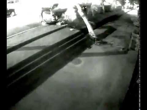 Авария в Алматы на Мира-Гоголя 21.06.2014г в 21:45.