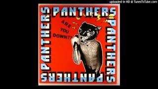 Watch Panthers Vandalist Committee Of Public video