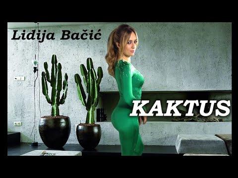 Lidija Bačić Kaktus retronew