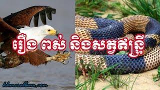 Download Khmer Legend- រឿង ពស់ និងសត្វឥន្ទ្រី 3Gp Mp4