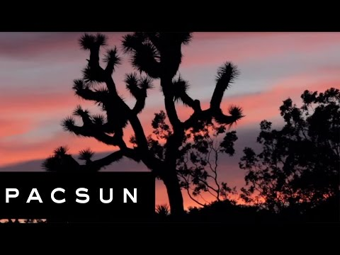 GSOM City Series: Joshua Tree National Park