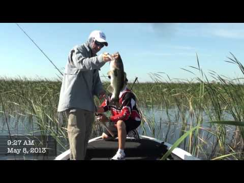 Bass Fishing Lake Okeechobee MONSTER BASS In Just One Hour