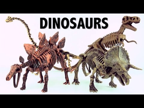 Dinosaur surprise Eggs Skeleton fossils Triceratops and Brachiosaurus Part 2