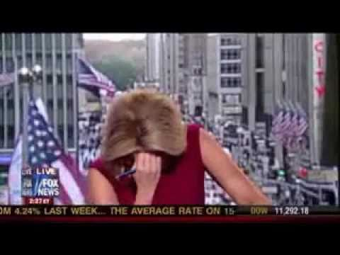 Megyn Kelly farts on live tv. Music Videos