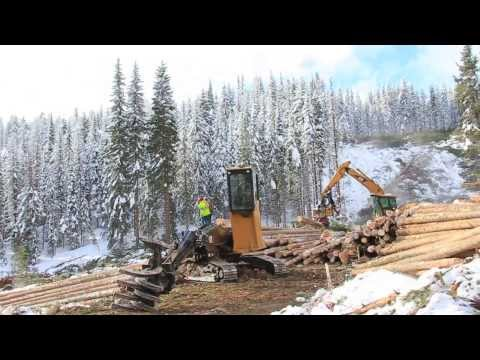 Logging (4 leaf logging)