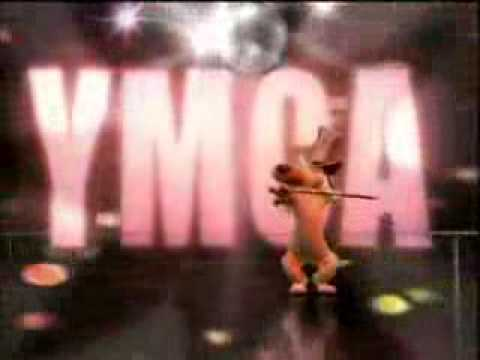 Ymca - Hippo And Dog video