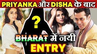 BHARAT | Salman Khan 2 नहीं बल्कि 3 Heroines के साथ करेंगे Romance