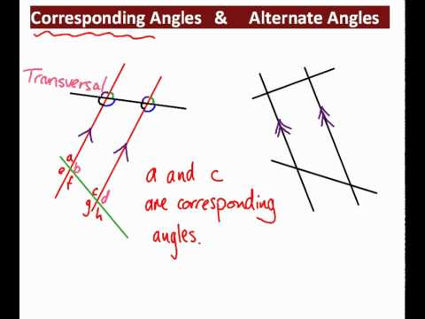 Corresponding And Alternate Angles Youtube