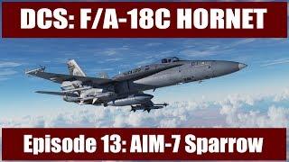 DCS: F/A-18C Hornet - Episode 13: AIM-7 Sparrow Air-to-Air Missile