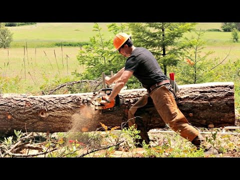 Are Chainsaw Mills Obsolete?