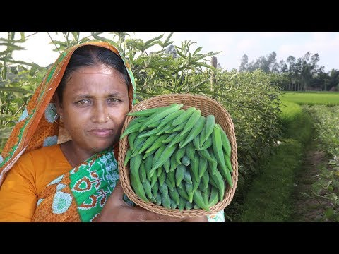Healthy Easy Cooking Okra Fry Recipe Farm Fresh Lady's Finger Fry Curry Bhindi Kurkure Village Food